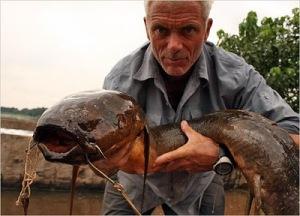 african lungfish situslakalaka 9 Monster Sungai Yang Masih Ada Hingga Saat Ini