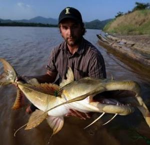 bagarius yarelli5%2Bsituslakalaka 9 Monster Sungai Yang Masih Ada Hingga Saat Ini
